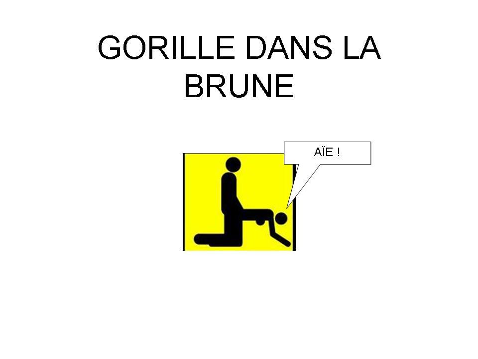 http://francoisville.free.fr/humour/GORILLE%20DANS%20LA%20BRUNE%20francois%20ville.jpg