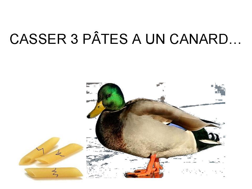 http://francoisville.free.fr/humour/casser%203%20pates%20a%20un%20canard%20francois%20ville.jpg