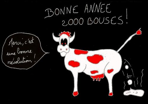 http://francoisville.free.fr/photos/bonne%20annee%202000%20bouses%20500%20350.jpg