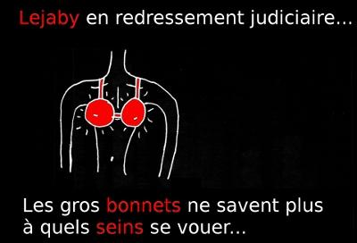 http://francoisville.free.fr/photos/lejaby%20redressement%20judiciaire%20sein%20bonnet.jpg